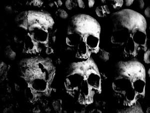 skulls-1024x768