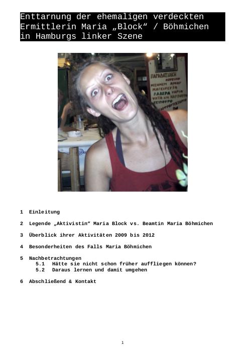 Le dossier intégral sur la barbouze à consulter en allemand au format PDF